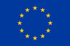 Text Box: DISARM a primit finanțare din programul de cercetare și inovare al Uniunii Europene Orizont 2020 în temeiul acordului de finanțare nr. 817591